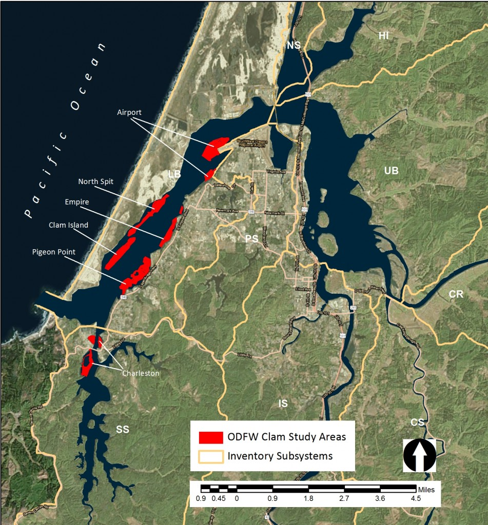 Figure 1. 2009 ODFW SEACOR study areas located in the South Slough (SS) and Lower Bay (LB) subsystems.