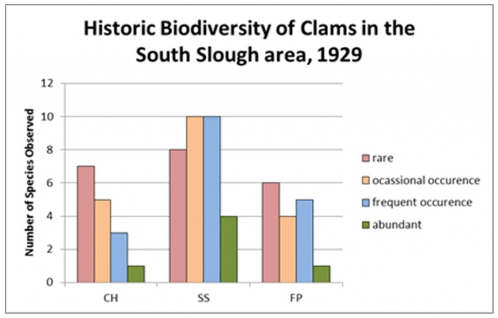 Figure 15. Relative diversity of clams in three inventory subregions. CH = Coos Head SS = South Slough FP = Fossil Point Data: Yocom and Edge 1929.