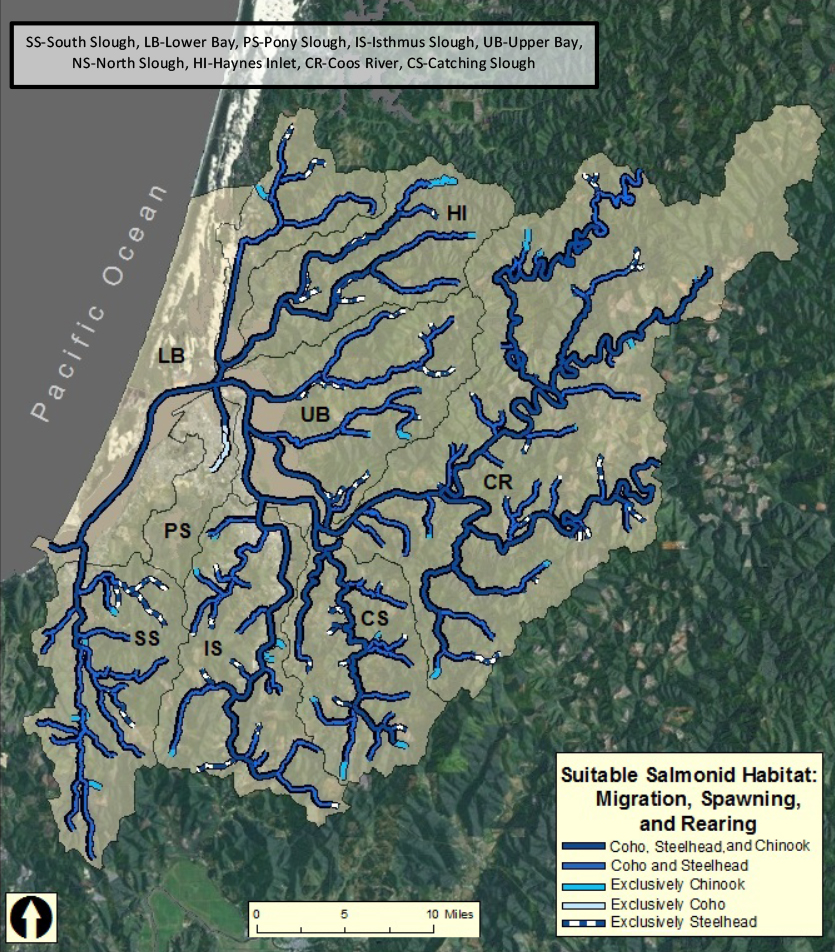 Figure 1. The spatial extent of habitat in the study area considered suitable for Coho and Chinook salmon, and for winter Steelhead migration, spawning, or rearing sometime during the past five reproductive cycles (ODFW 2013f).