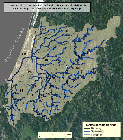 Figure 2. The spatial extent of coho salmon. Data: ODFW 2013b