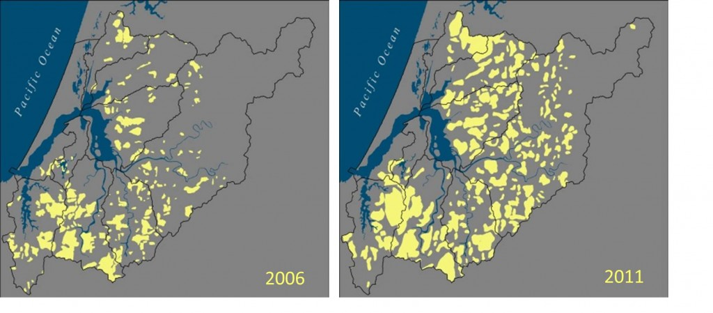 Figure 20. Spatial extent of Swiss needle cast disease in Douglas-fir populations in the project area in 2006 and 2011 (the lowest and highest (respectively) SNC occurrences betrween 2006 and 2014). Data: ODF 2014b.