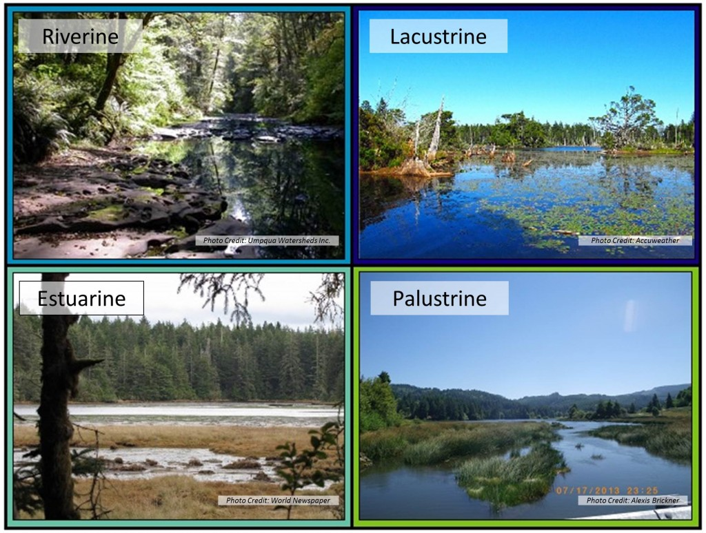 Figure 4. Examples of habitat representing four NWI Systems. See Figure 1 for distribution of Systems within project area and Table 2 for definitions. Top left: Millicoma River, Coos River Subsystem; Top right: Empire Lakes, Lower Bay Subsystem; Bottom left: Hidden Creek marsh, South Slough Subsystem; Bottom right: Matson Creek marsh, Catching Slough Subsystem.