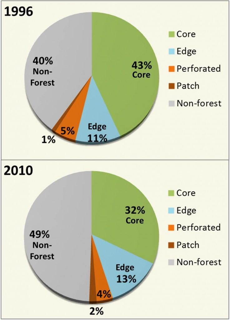Figure 5. Net change in forest fragmentation classes from 1996 and 2010. Core = forest surrounded by forest; Edge = forest on the edge of a core forest; Perforated = forest within core forest next to small clearings; Patch = small fragments of forest. Data: C-CAP 2014
