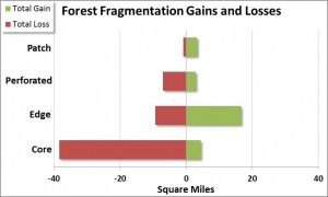 Figure 6. Distribution of gains and losses of each forest fragmentation class from 1996 to 2010. Gains/losses are conversions from non-forest lands as well as from other forest fragmentation classes. Data: C-CAP 2014