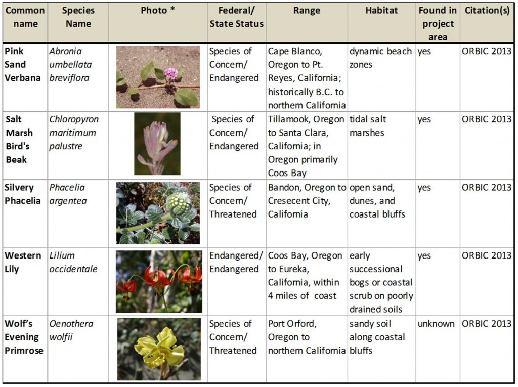 Table 1. Summary of rare and endangered species with ranges within the project area. Photos: Oregon Department of Agriculture, except western lily (USFWS).