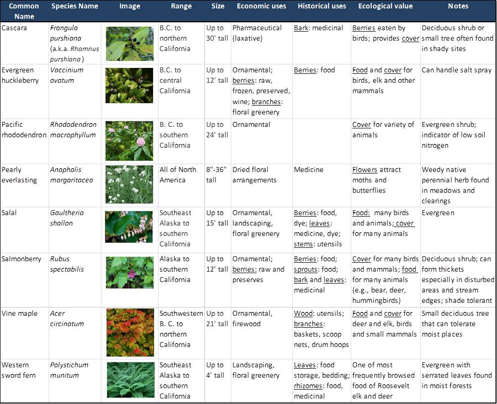 Table 4. Range, size, and uses of the most common understory species in the project area. Sources: Garrison and Smith 1974, Randall et al. 1981, Pojar and MacKinnon 1994, Tirmenstien 1990
