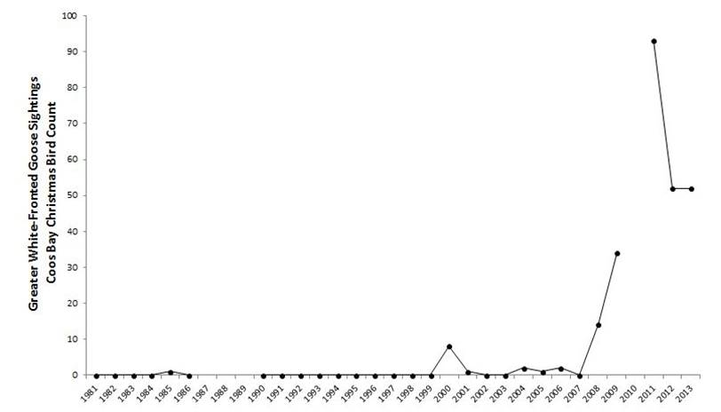 Figure 10. Greater white-fronted goose abundance in the Coos estuary. Data gaps in CBC data exist for years during which the Count was not conducted (2010) or not reported (1987-89).  Data: Audubon 2014, Rodenkirk 2012