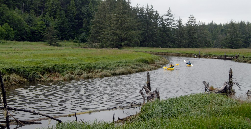 Present day kayakers paddling along the South Slough estuary, an arm of the Coos estuary. Source: South Slough NERR