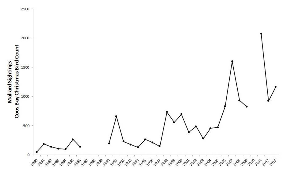Figure 11. Mallard abundance in the Coos estuary. Data gaps in CBC data exist for years during which the Count was not conducted (2010) or not reported (1987-89).  Data: Audubon 2014, Rodenkirk 2012; Sketch: Csuti et al. 1997
