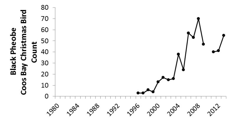 Figure 12. Coos Bay CBC data indicate that local midwinter black phoebe abundance has increased, with consistent sightings beginning in 1996 and increasing since then. Data gaps occur during years in which the CBC was not conducted (2010) or not reported (1987-89). Data: Audubon 2014, Rodenkirk 2012; Bird Sketch: Csuti et al. 1997