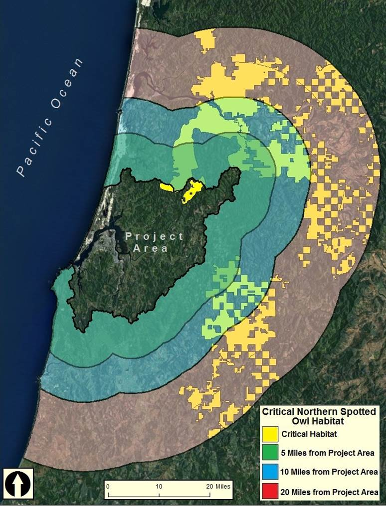 Figure 14. Critical northern spotted owl habitat (yellow) within the lower Coos watershed (Project Area) and immediately associated uplands ( > 20 miles from project area boundary. Data: USFWS 2012