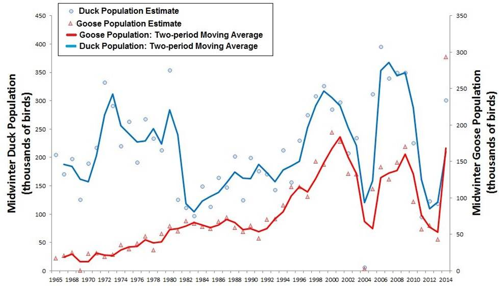 """Figure 5.  Trends in midwinter population of ducks (blue) and geese (red) in the Western Oregon Pacific Flyway survey zone (see Figure 3)(1965-2014). Point estimates for midwinter population of ducks (dots) and geese (triangles) are connected by a two-period moving average, which helps expose underlying trends by imposing """"smoothness"""" on the population data. Data: USFWS 2014b"""