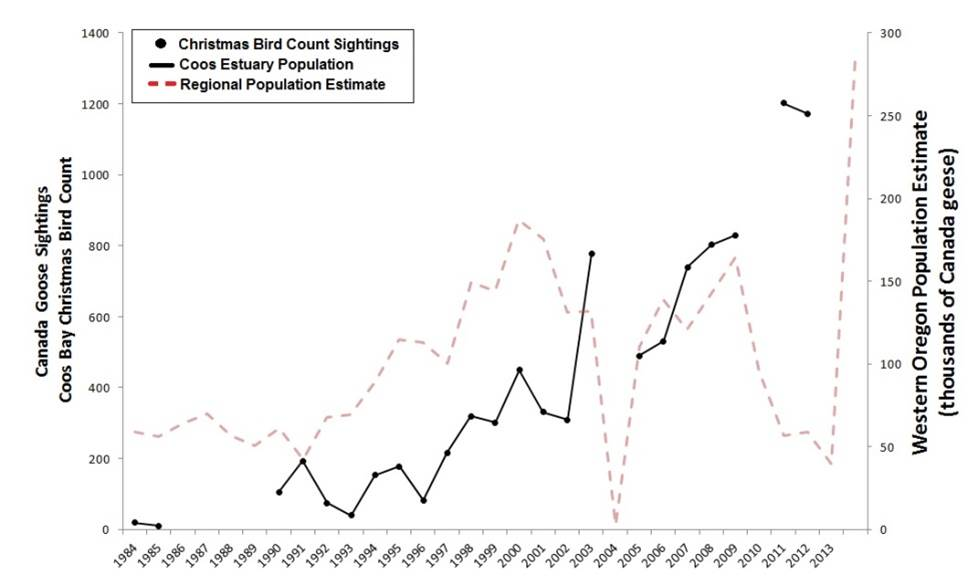 Figure 8. Indicators of Canada goose abundance in the Coos estuary (black) and across western Oregon (red)(1984-2012). Data gaps in CBC data exist for years during which the Count was not conducted (2010) or not reported (1987-89).  Data: Audubon 2014, Rodenkirk 2012, USFWS 2014a; Sketch: Csuti et al. 1997