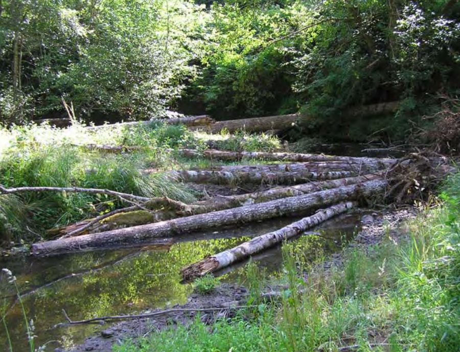 Figure 27. Tributary of the West Fork Millicoma River before (left) and after (right) intentional placement of large wood pieces. Source: CoosWA 2009