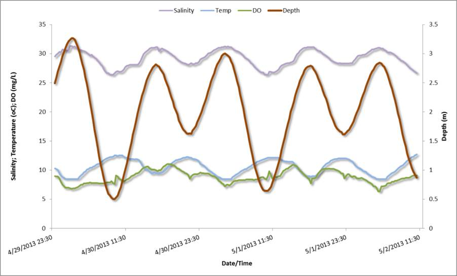 Figure 15. Relationships between water depths (tide levels) and salinity, temperature, and dissolved oxygen at the Charleston SWMP station over the course of 2 consecutive spring days in 2013. Data: SWMP 2014.