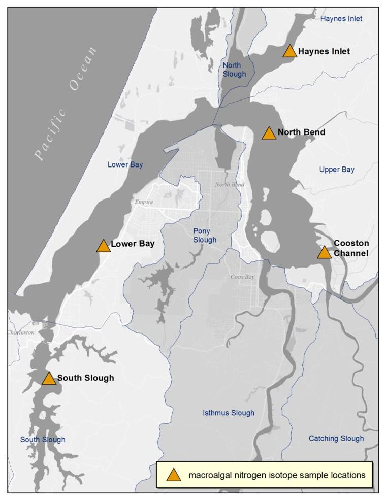 Figure 23. Station locations of macroalgae samples taken for δ15 N, an isotope used to determine nitrogen sources. Project area subsystems are named and outlined in blue. Shaded subsystems had no data from this source. Data: Lee II and Brown 2009.