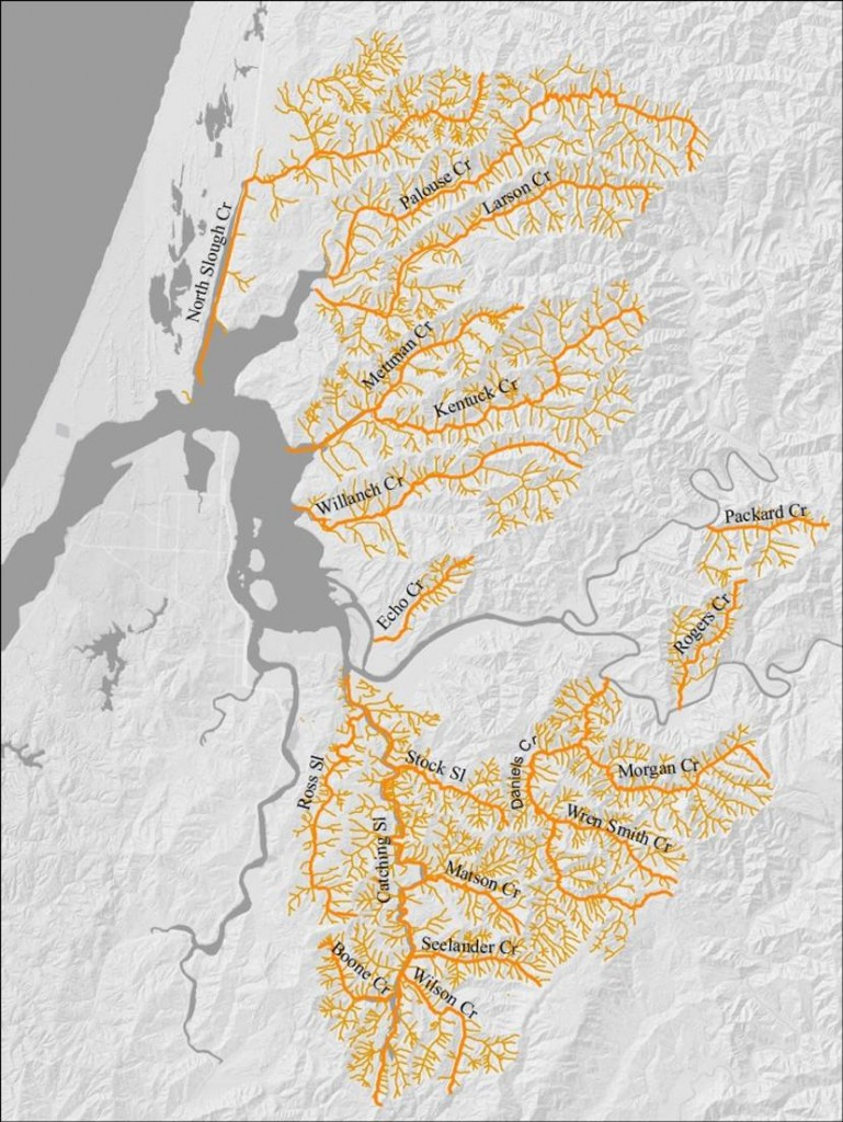 Figure 30. Streams referenced in Coos Watersheds assessment reports. Exact site locations for water temperature measurements were not included in the reports, to protect landowner privacy.