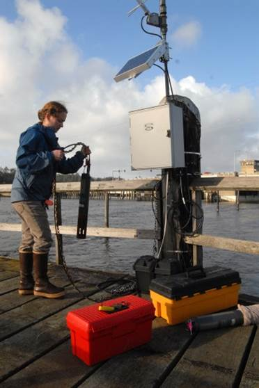 Figure 4. SSNERR staff member deploying a water quality data sonde at the Charleston SWMP station.