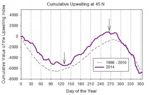 Figure 11. Cumulative upwelling plot for the Pacific Northwest (45oN) in 2014. Upwelling events occur between the days designated by the two arrows (spring transition: early May; fall transition: mid-October). Cumulative upwelling plots add the amount of upwelling (m3/s per 100 m coastline) on day 1 (January 1st) to that of day 2, and so on. Thus, days with upwelling move the curve up while days with downwelling move the curve down. Source: NWFSC 2015.