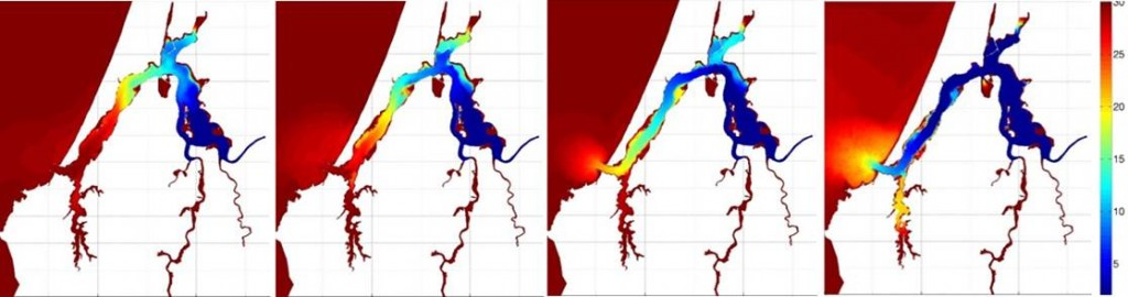 Figure 2. Computer screenshots of the prototype of the Coos estuary hydrodynamic model showing water surface salinity before, during and after a freshwater discharge event. Salinity color legend is shown at right.  Sutherland 2013.