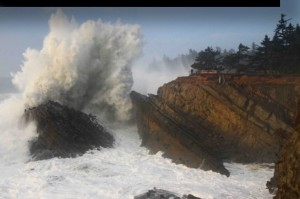 Photo: High Tide Cafe Photo: Steven Michael