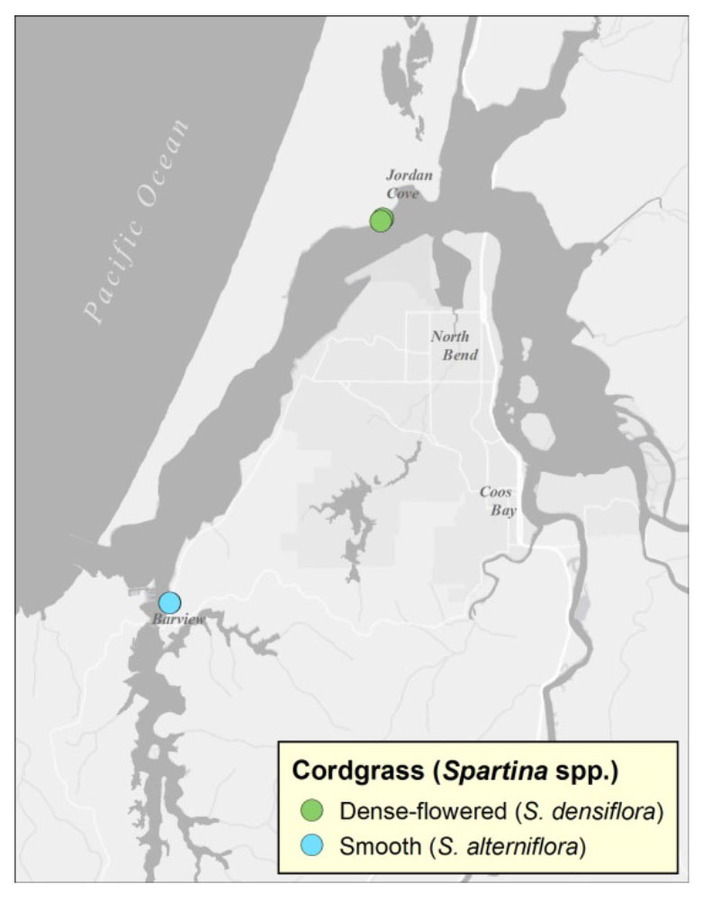 Figure 1: Locations of historic cordgrass infestations in the Coos estuary. All known plants have since been eradicated. Data: SSNERR 2013