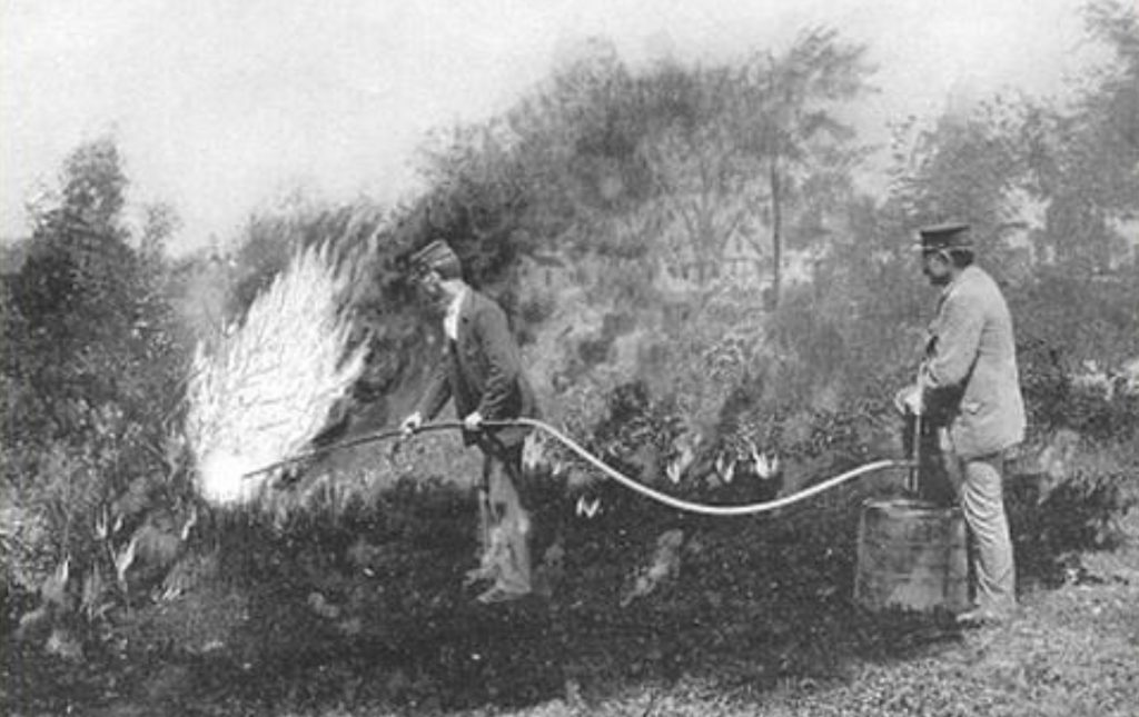 Figure 1. Two workers attempting eradicate European gypsy moth by burning the forest with kerosene (c. 1890). Photo: USDA 2003b