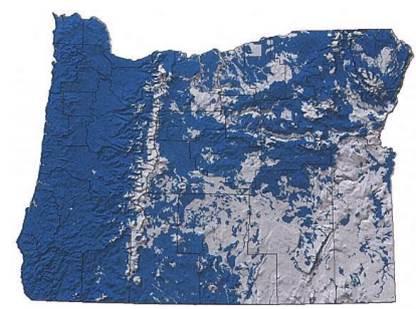 Figure 8. Range map showing the extent of raccoon habitat (purple) in Oregon. Figure: Csuti et al. 1997.