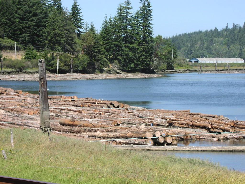 Isthmus Slough log raft